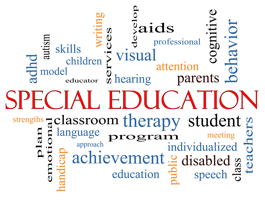 Special Education Monographs